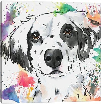 Brilliant Spaniel Mix Dog Canvas Art Print