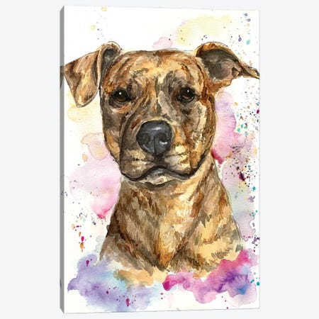 Brindle Gilly Canvas Print #AGY17} by Allison Gray Canvas Art Print