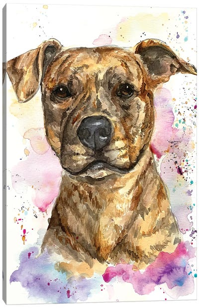 Brindle Gilly Canvas Art Print