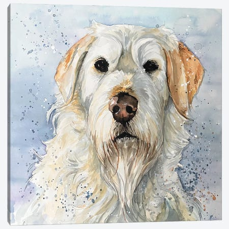 Brodie Canvas Print #AGY18} by Allison Gray Canvas Artwork