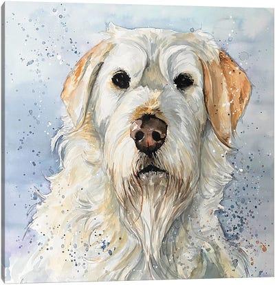 Brodie Canvas Art Print
