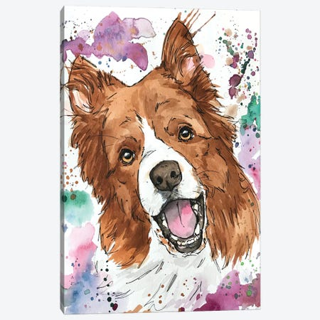 Casey Austrailian Shepherd Canvas Print #AGY23} by Allison Gray Canvas Art Print