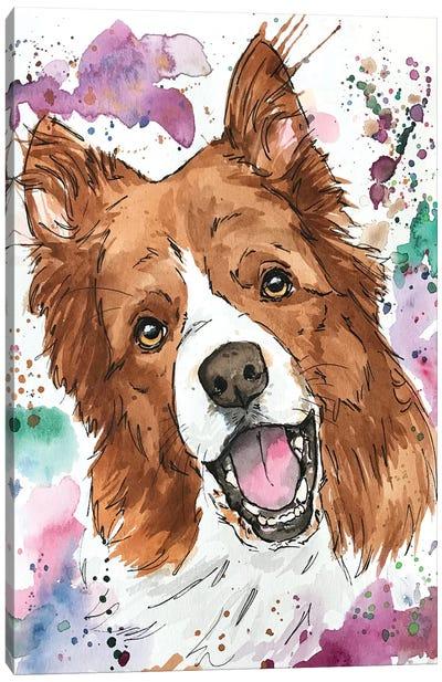 Casey Austrailian Shepherd Canvas Art Print