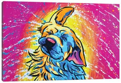 Colorful Shaking Golden Retriever Canvas Art Print