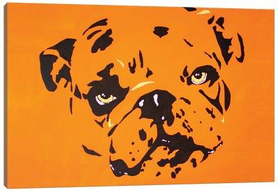 Contrast Bulldog Canvas Art Print