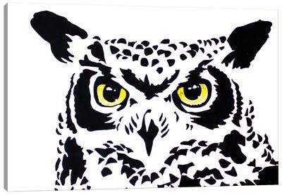 Contrast Owl Canvas Art Print