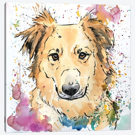 Golden Collie Mix Dog Canvas Print #AGY60} by Allison Gray Canvas Art Print