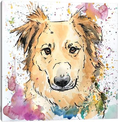 Golden Collie Mix Dog Canvas Art Print