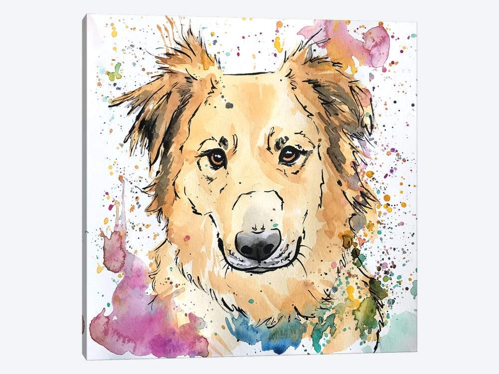 Golden Collie Mix Dog by Allison Gray 1-piece Canvas Print