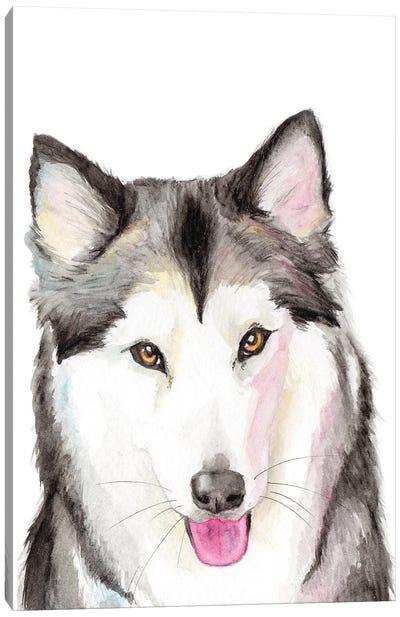 Husky Canvas Art Print