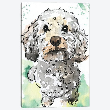 Miniature Poodle Canvas Print #AGY80} by Allison Gray Canvas Print