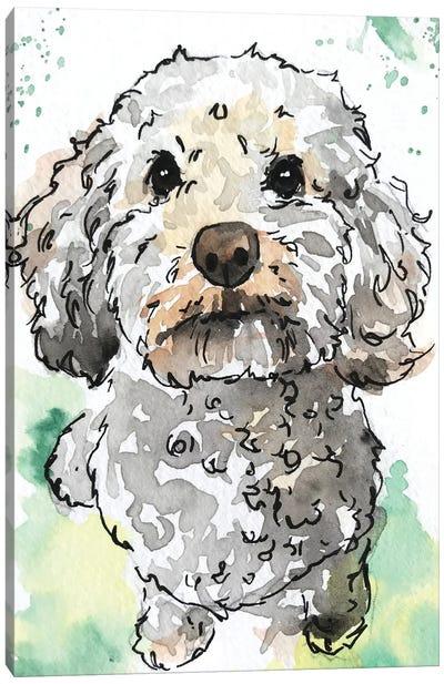 Miniature Poodle Canvas Art Print