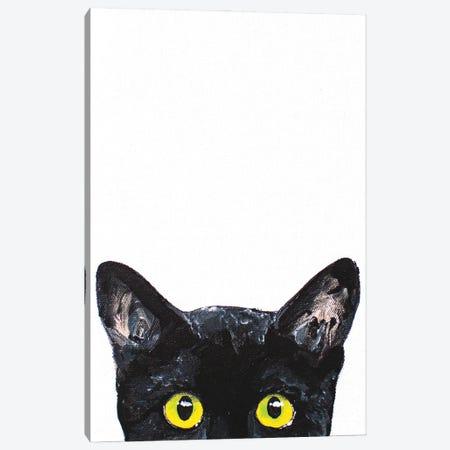Peeking Cat Canvas Print #AGY89} by Allison Gray Art Print