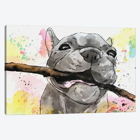 Playful French Bulldog Puppy Canvas Print #AGY93} by Allison Gray Canvas Wall Art