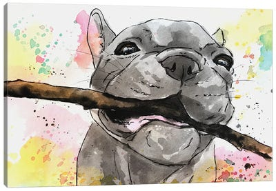 Playful French Bulldog Puppy Canvas Art Print