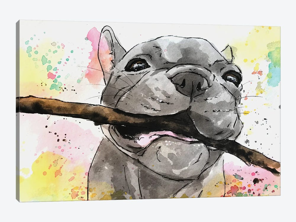 Playful French Bulldog Puppy by Allison Gray 1-piece Canvas Print