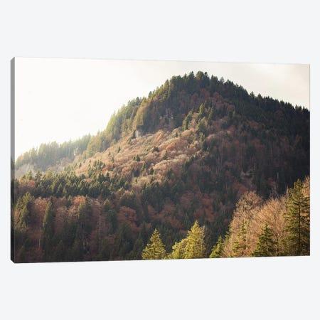 Mountain Light Canvas Print #AHD101} by Ann Hudec Canvas Print
