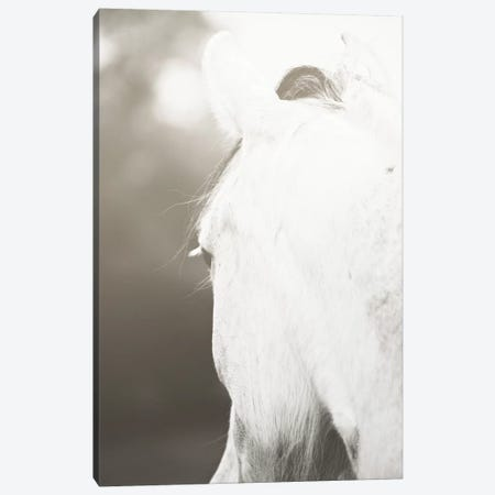 Pearl Canvas Print #AHD116} by Ann Hudec Canvas Print