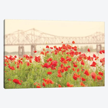 Red Poppies Canvas Print #AHD127} by Ann Hudec Canvas Wall Art