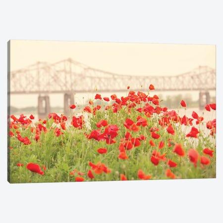 Red Poppies Canvas Print #AHD127} by Ann Hudec Canvas Wall Art