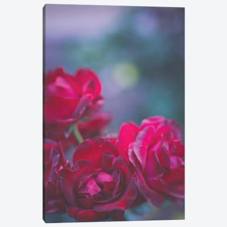 Roses Are Red Canvas Print #AHD130} by Ann Hudec Canvas Art