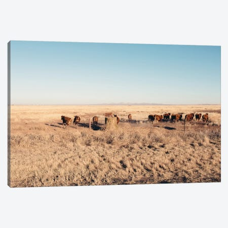 Stampede Canvas Print #AHD149} by Ann Hudec Canvas Print