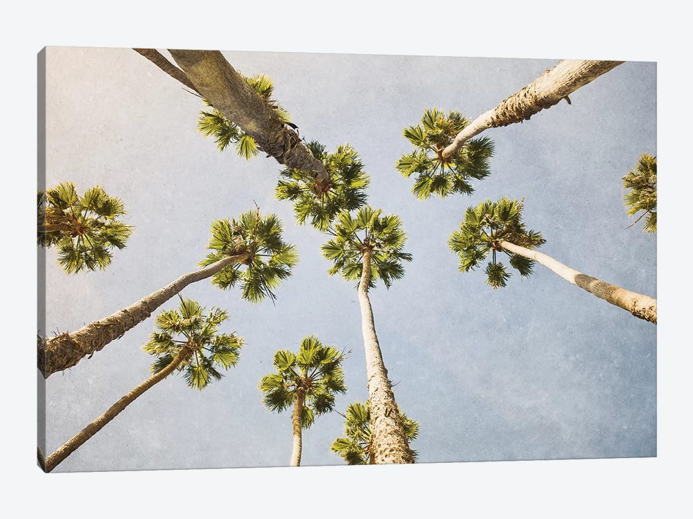 Summer In L.A. I by Ann Hudec 1-piece Canvas Wall Art