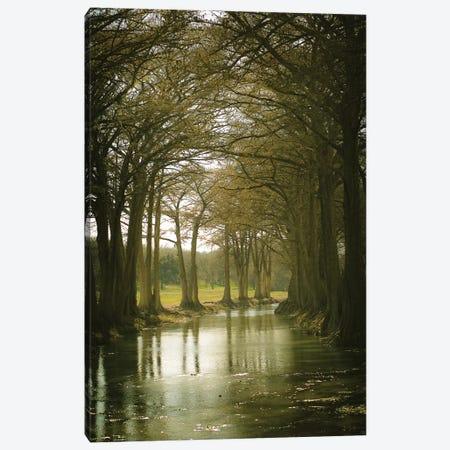 Texas Hill Country Canvas Print #AHD161} by Ann Hudec Canvas Art Print