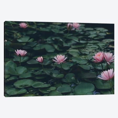 The Lilypond Canvas Print #AHD168} by Ann Hudec Canvas Print
