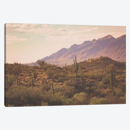 Tucson Sunrise Canvas Print #AHD172} by Ann Hudec Canvas Art