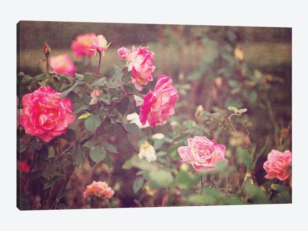 Vintage Roses by Ann Hudec 1-piece Canvas Artwork