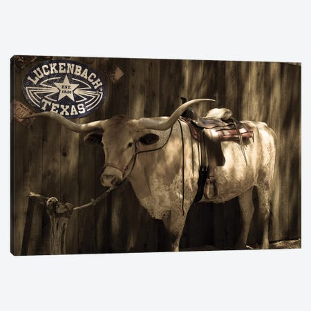 Vintage Texas Canvas Print #AHD184} by Ann Hudec Canvas Wall Art