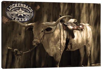 Vintage Texas Canvas Art Print