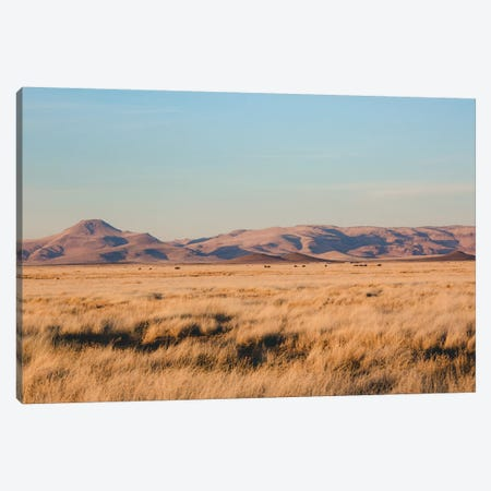 West Texas Wild Canvas Print #AHD189} by Ann Hudec Canvas Print
