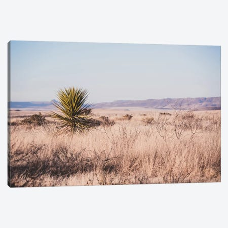 Wildwest Canvas Print #AHD193} by Ann Hudec Canvas Wall Art