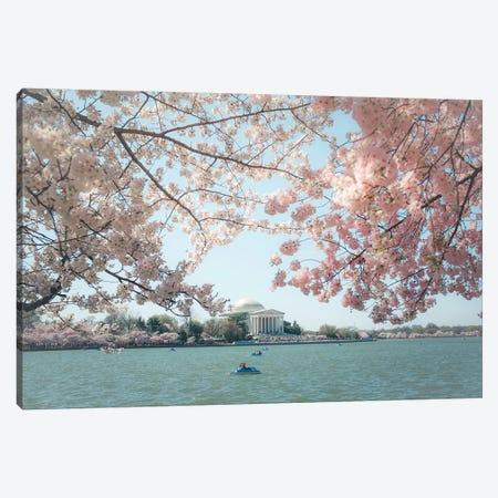 Washington Dc Cherry Blossoms Canvas Print #AHD201} by Ann Hudec Canvas Wall Art