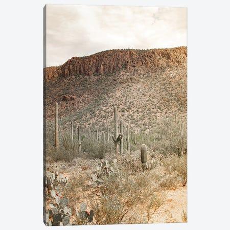 Desert Heart - Tucson, Arizona Canvas Print #AHD205} by Ann Hudec Canvas Print