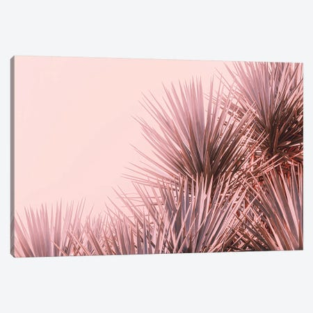 Boho Pink Palms Canvas Print #AHD206} by Ann Hudec Canvas Art Print