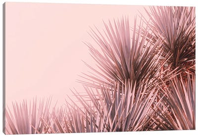 Boho Pink Palms Canvas Art Print