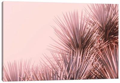 Boho Pink Palms Canvas Art Print