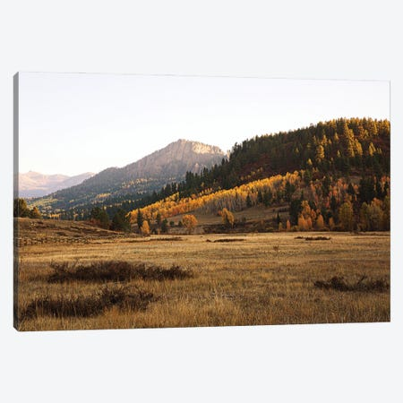 Colorful Colorado Autumn In The Mountains II Canvas Print #AHD233} by Ann Hudec Canvas Print