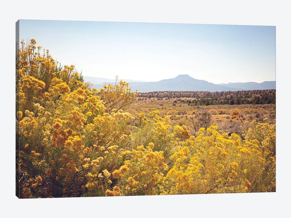 New Mexico Gold by Ann Hudec 1-piece Canvas Print