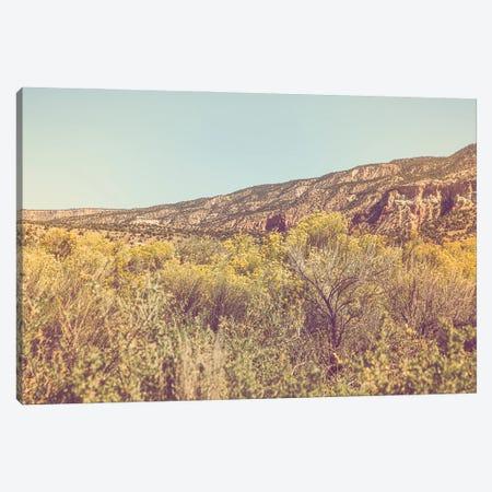 New Mexico Gold II Canvas Print #AHD243} by Ann Hudec Canvas Artwork