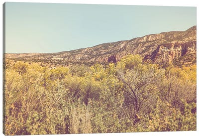 New Mexico Gold II Canvas Art Print