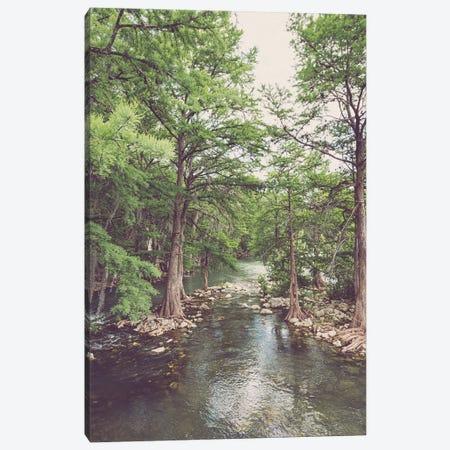Guadalupe River New Braunfels Texas Canvas Print #AHD245} by Ann Hudec Canvas Print