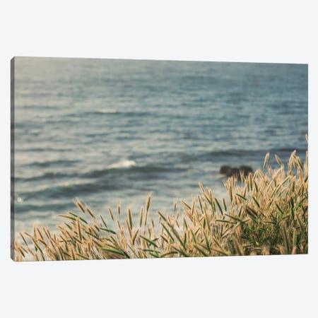 Coastal Hues Canvas Print #AHD25} by Ann Hudec Art Print