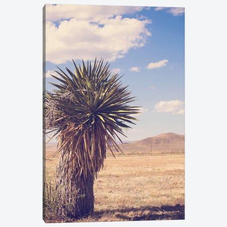 Desert Day Canvas Print #AHD35} by Ann Hudec Canvas Artwork