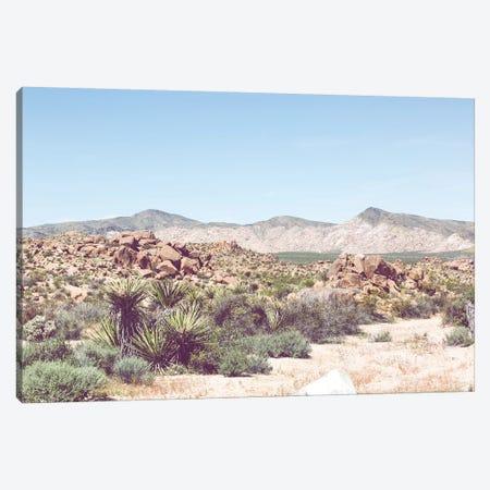 Desert Hues Canvas Print #AHD39} by Ann Hudec Art Print