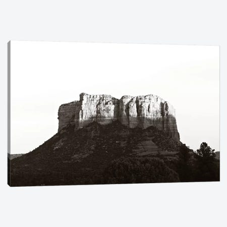 Desert Minimalism Canvas Print #AHD41} by Ann Hudec Canvas Wall Art