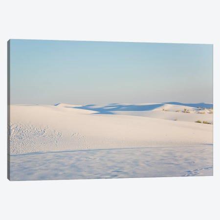 Desert Solitude Canvas Print #AHD45} by Ann Hudec Canvas Print